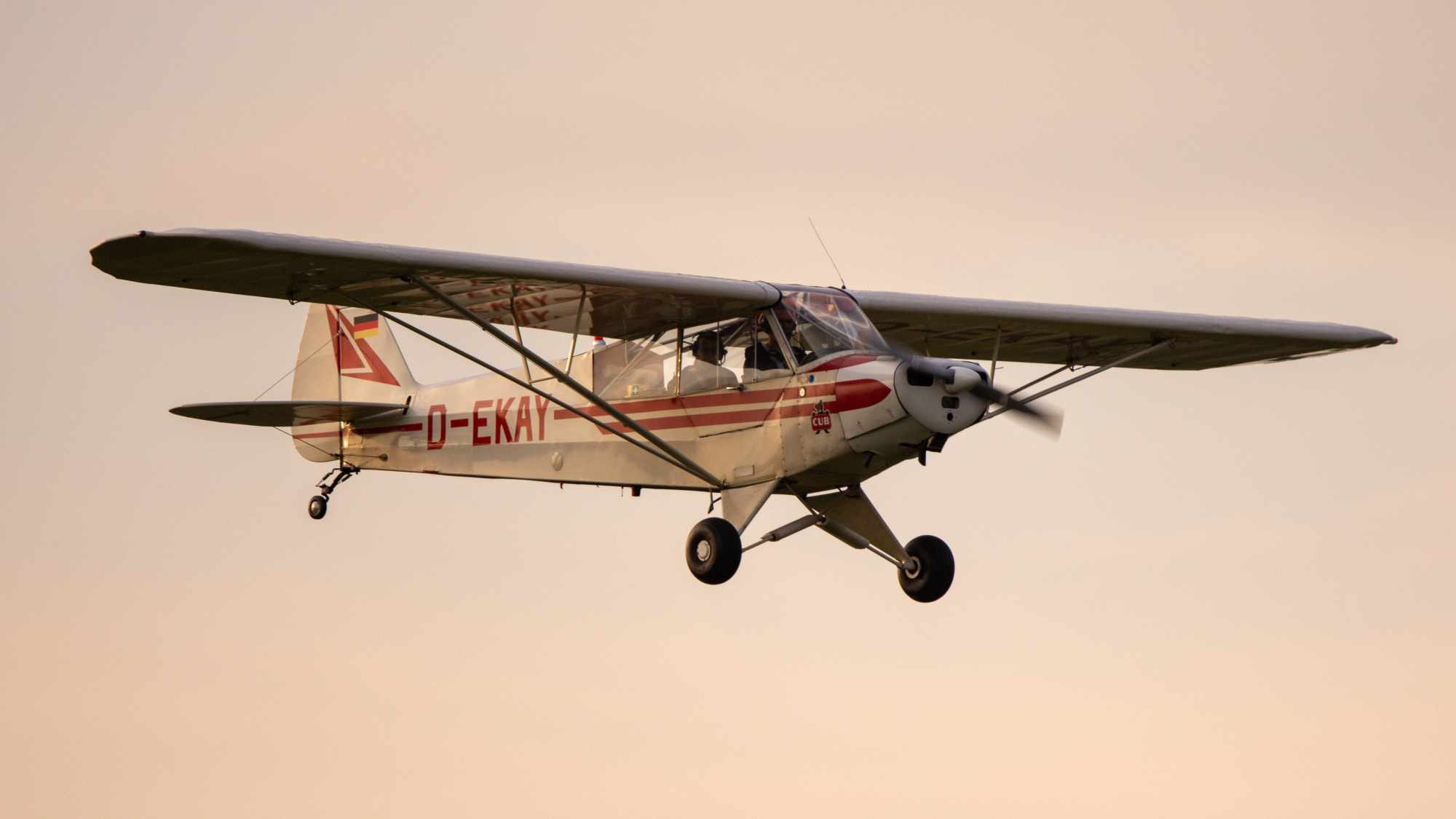 D-EKAY - Piper PA-18 Super Cub